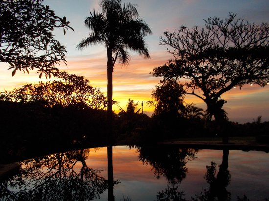 The Damai: Sunset
