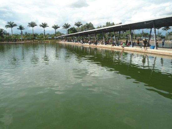 Pousada Maeda : Um dos tanques de pesca