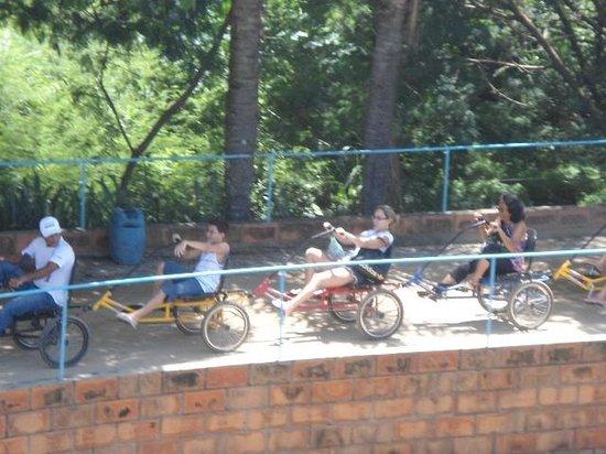 Pousada Maeda : Passeio de bicicleta