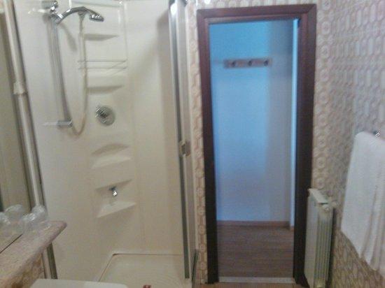 Hotel l'Arolla : Bagno, doccia ampia