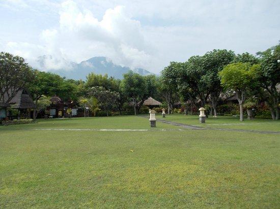 Taman Sari Bali Resort & Spa : grounds