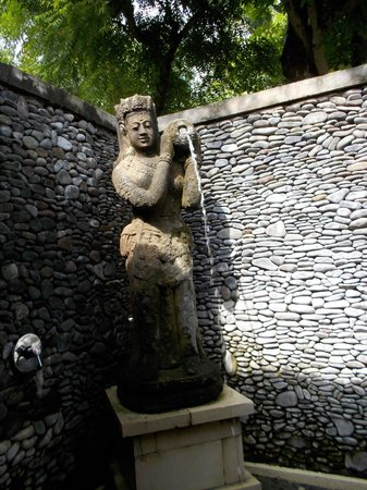 Taman Sari Bali Resort & Spa: Hotel shower