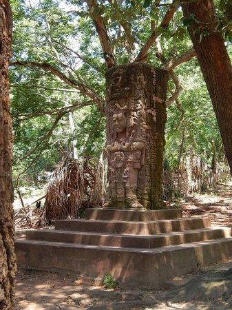 Butterfly Gardens : Mock ruins