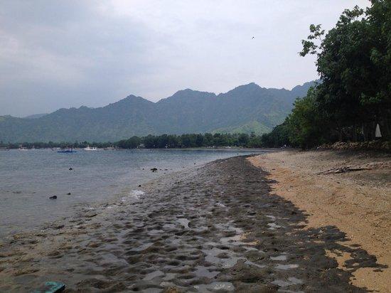 Taman Sari Bali Resort & Spa: Really not possible to walk along the beach here :-(