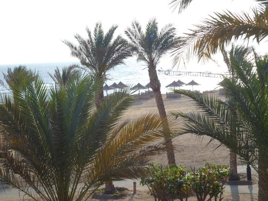 Port Ghalib Resort: photo