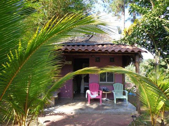 Monkey Lodge Panama: Bungalow