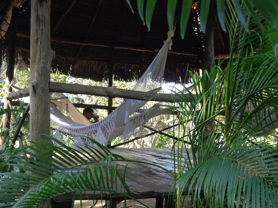 Monkey Lodge Panama: Coin hamacs