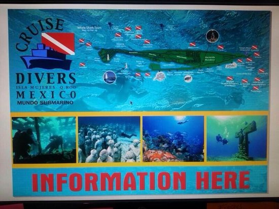 Cruise Divers