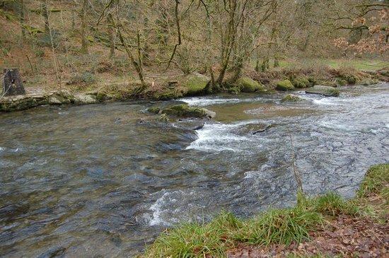 Tarr Steps: river barle