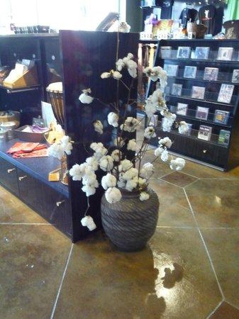 B.B. King Museum and Delta Interpretive Center: Pianta di cotone allo store