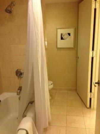 Washington Dulles Marriott Suites: Shower