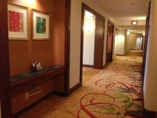 Washington Dulles Marriott Suites: Hallway