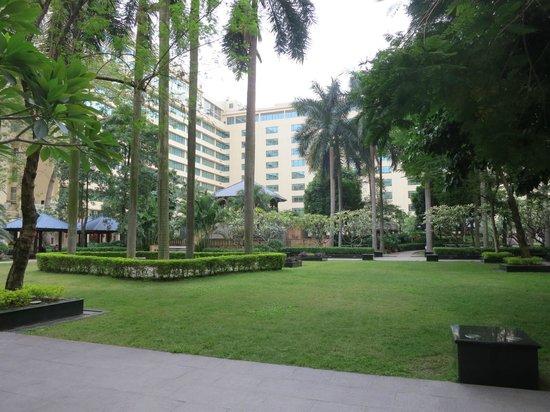Dongfang Hotel: Garden