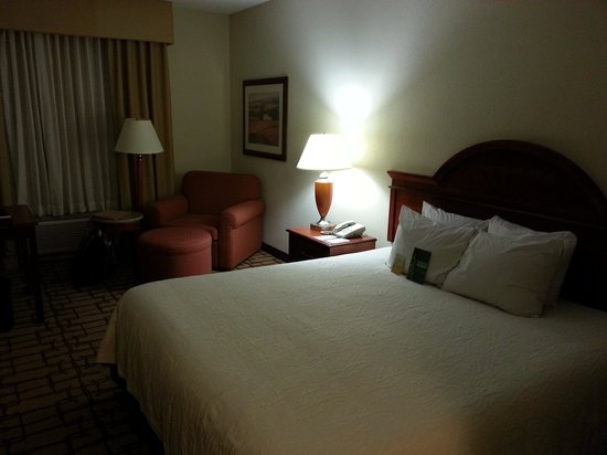 Hilton Garden Inn Atlanta NW/Wildwood: Room