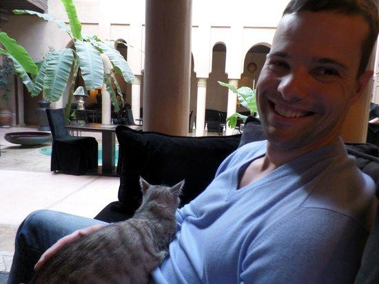Riad Noir d'Ivoire: Having some mint tea with a Riad Cat