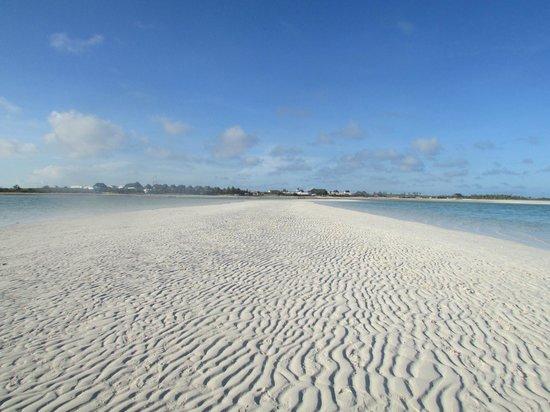 Jacaranda Beach Resort : Mare di fronte al villaggio con bassa marea
