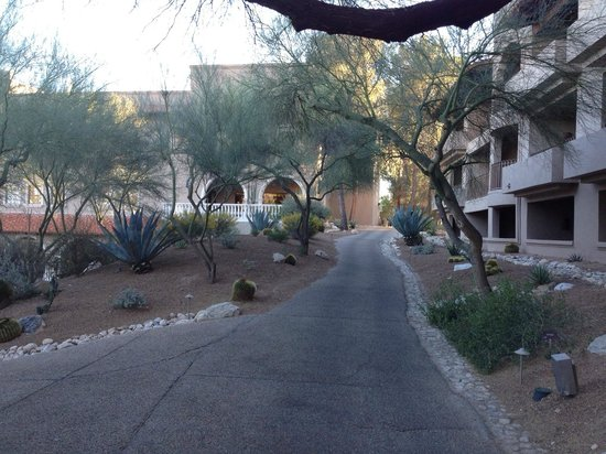 Westin La Paloma Resort and Spa: A light stroll from the rooming buildings to the main resort