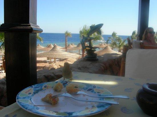 The Royal Savoy Sharm El Sheikh: restaurant aan het strand