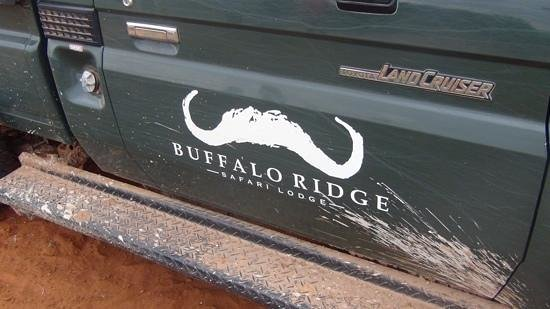 Buffalo Ridge Lodge: our home for 6hrs a day !