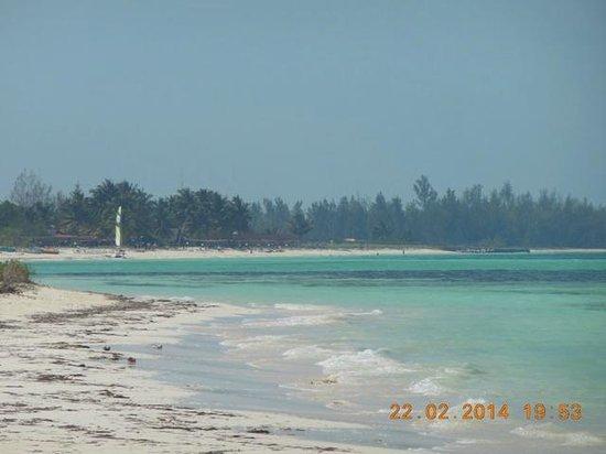 Hotel Cayo Levisa: spiaggia dell'hotel