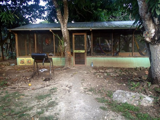 Backpackers Paradise : communal area with kitchen