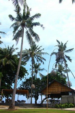 Lilin Lovina Beach Hotel: Square