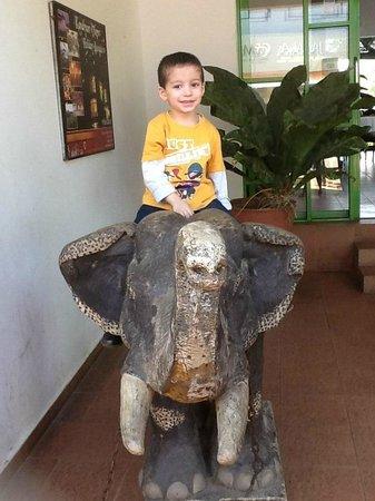 Hotel Elephant Park: My son