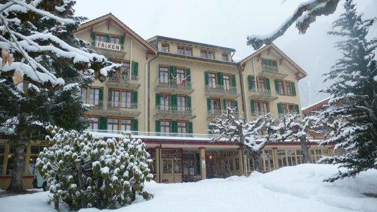 Hotel Falken Wengen : HOTEL FALKEN