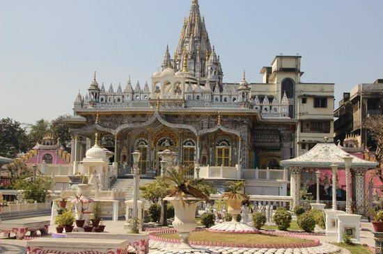 Pareshnath Jain Temple: Paresnath Temple