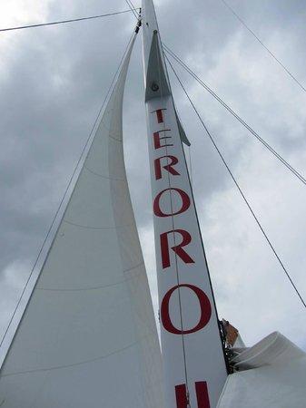 Buck Island Reef National Monument: Teroro II mast