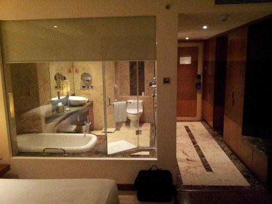 Radisson Blu Plaza Delhi Airport: Bathroom