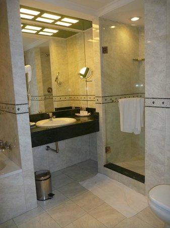 Emperador Hotel Buenos Aires: Bathroom