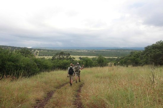 Leopard Mountain Safari Lodge : On the road