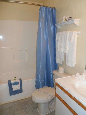 Affordable Corporate Suites Waynesboro: Bathroom