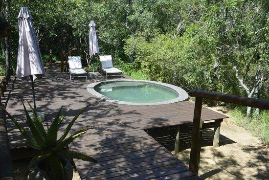 Ngama Tented Safari Lodge: Pool