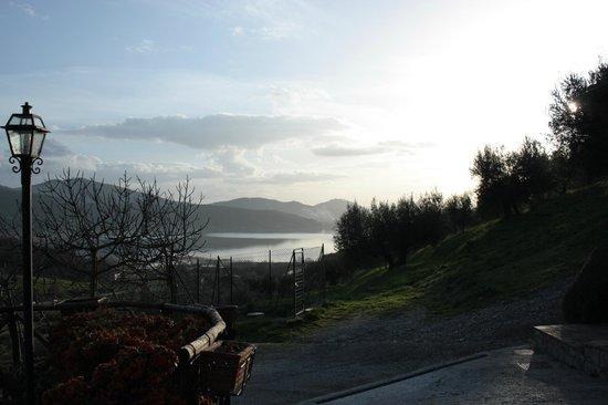 Podere Monte Petreto: vista dal vialetto