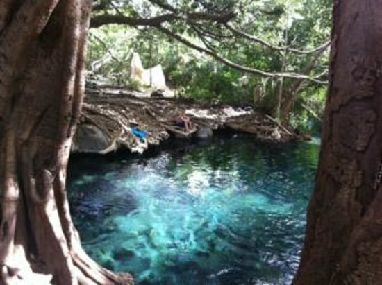 Moshi, แทนซาเนีย: Hot Springs near Kilimanjaro | Day Trip from Arusha