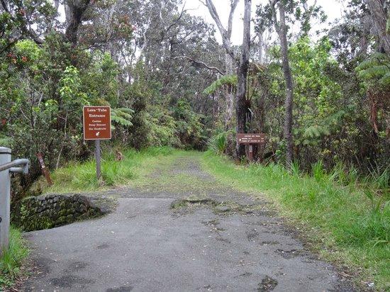 Nahuku - Thurston Lava Tube: 步道入口
