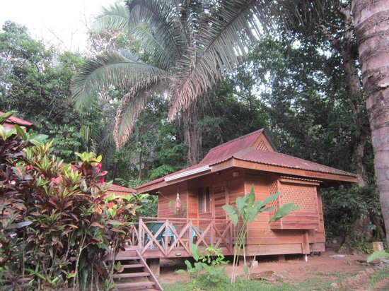 Hotel El Mono Feliz : Cabins