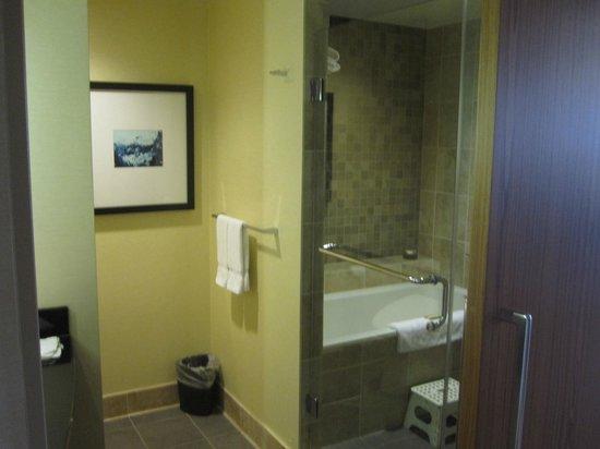 Miyako Hybrid Hotel : bathroom