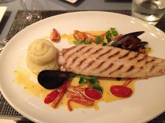 Seafood at the Marine: Fish dish