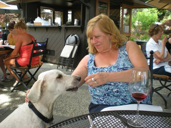 Lake Breeze Winery Patio Restaurant: Very gentle friend