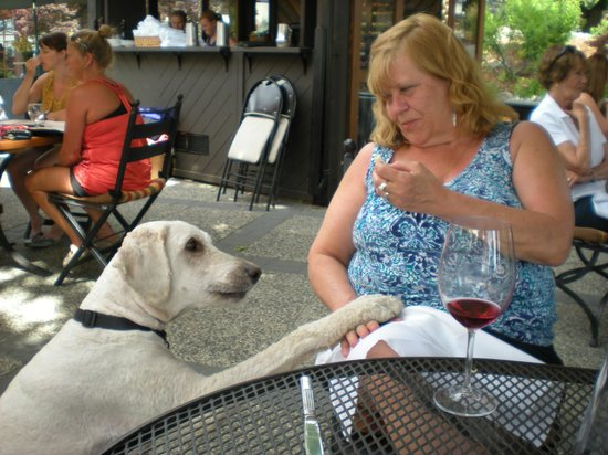 Lake Breeze Winery Patio Restaurant: My new friend