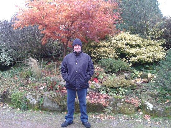 Holiday Inn Dumfries: japanese gardens
