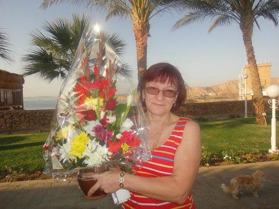 Beach Albatros Sharm: незабываемый день рождения