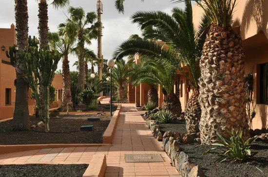 Oasis Duna Hotel: små gangveier imellom bungalowene