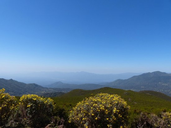 View, Bale Mountains