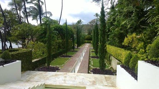Shangri La: gardens with cyprus