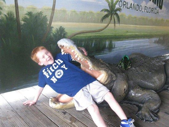 Gatorland: Fun photo ops