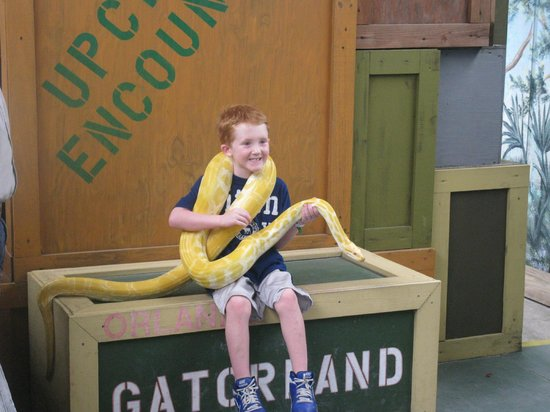 Gatorland: Get your picture quick - its only on for a second.
